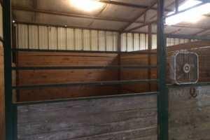 big-barn-stall-2