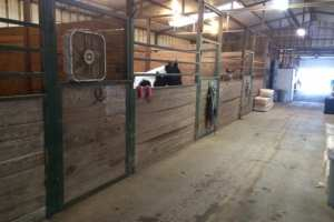 big-barn-stalls